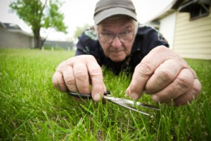 crazy-guy-cutting-grass