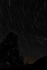 Dark Park Star Trails